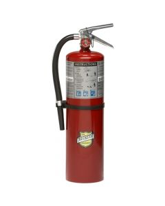 Buckeye ABC Multipurpose Dry Chemical Hand Held Fire Extinguisher w/ Wall Hook; 10 lbs Agent Capacity 11340